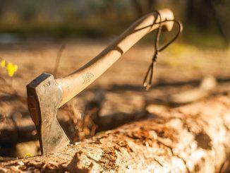 an axe stuck into a tree